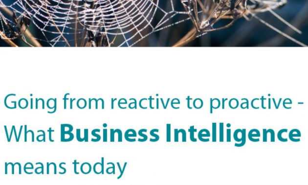 Going from reactive to proactive - What Business Intelligence means today 1