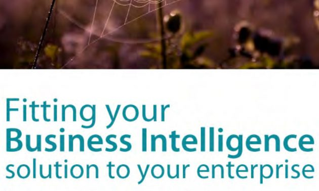 Fitting your Business Intelligence solution to your enterprise 2